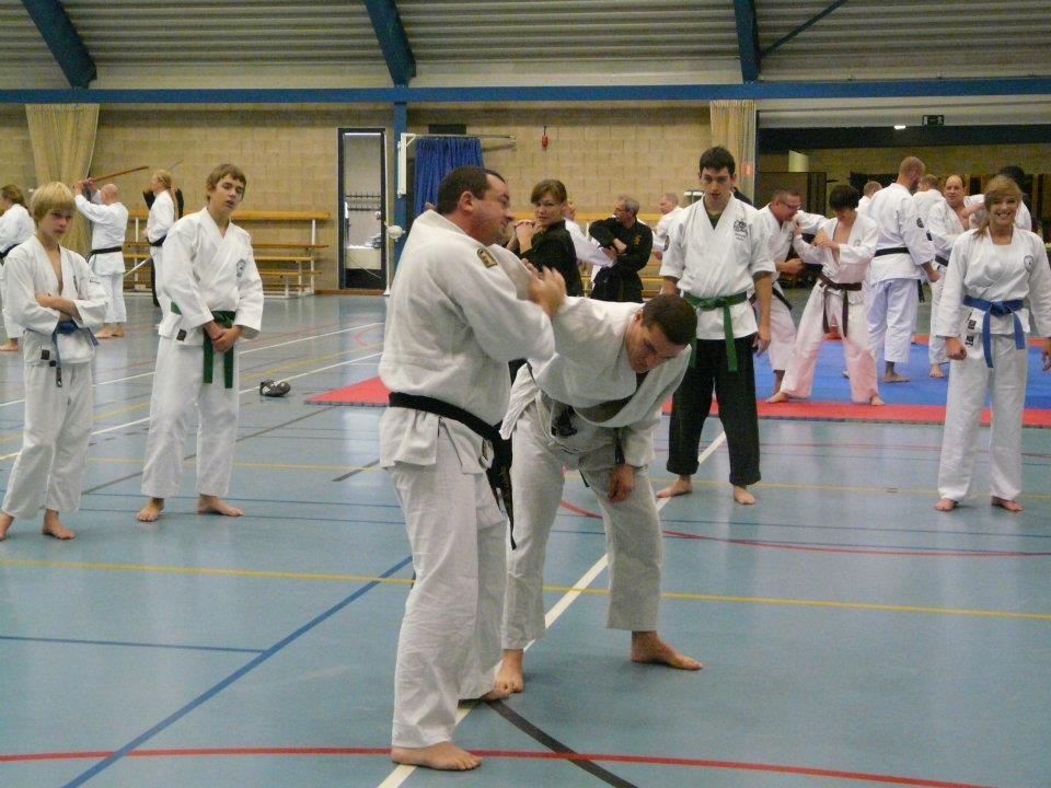 stage-jujitsu-efjjsd-imaf-europe-19-novembre-2011-1
