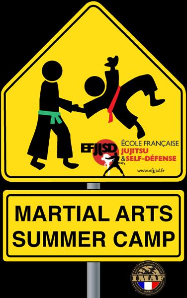 martial-arts-camp-jujitsu-efjjsd-2015