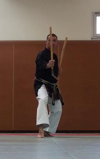 jujitsu efjjsd stage ete 2015 thierry booms 1