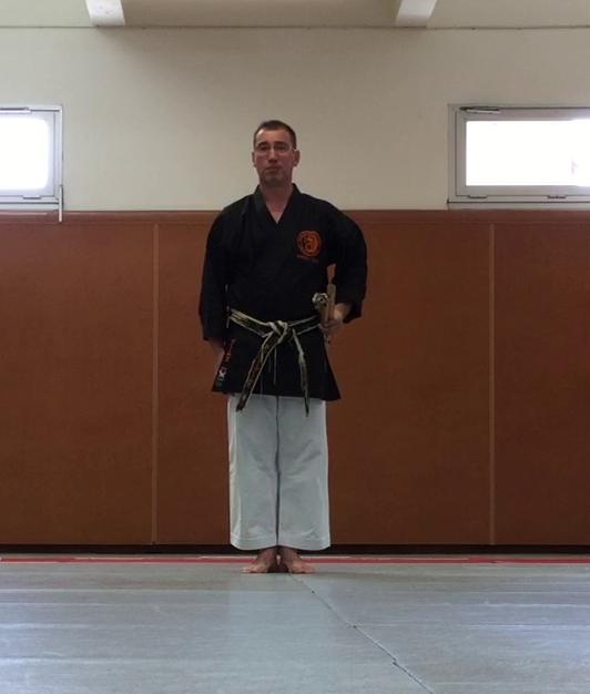 jujitsu efjjsd stage ete 2015 thierry booms