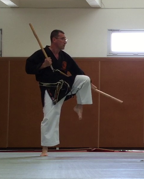 jujitsu efjjsd stage ete 2015 thierry booms3