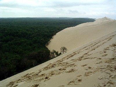 la dune du pyla une curiosite geologique