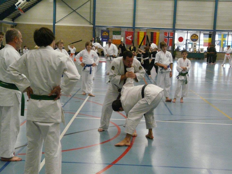 stage-jujitsu-efjjsd-imaf-europe-19-novembre-2011-2