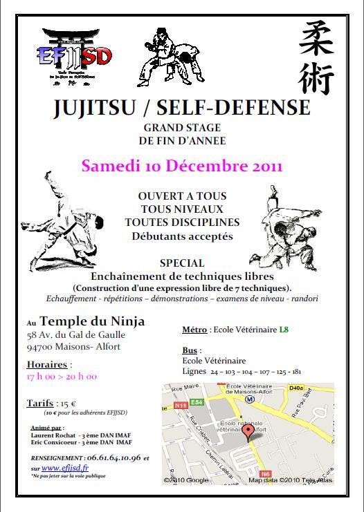 stage_jujitsu_efjjsd_maisons-alfort_10decembre2011