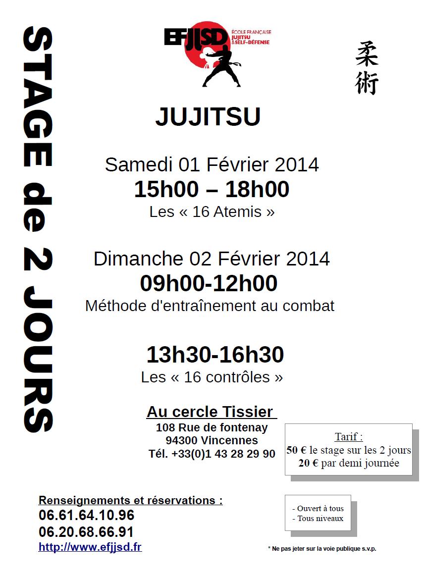 stage-jujitsu-1-et-2-fevrier-2014-ejjsd