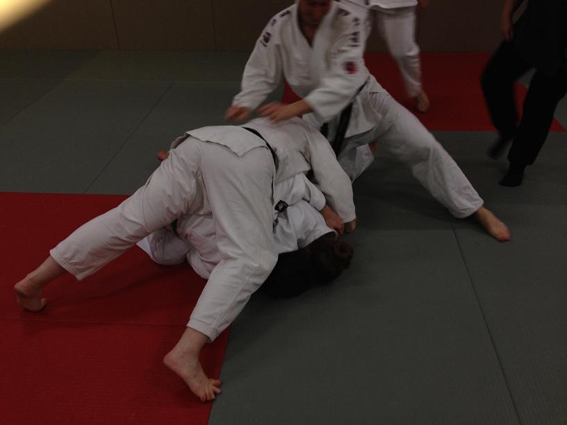 stage-jujitsu-efjjsd-1-fevrier-2014-4