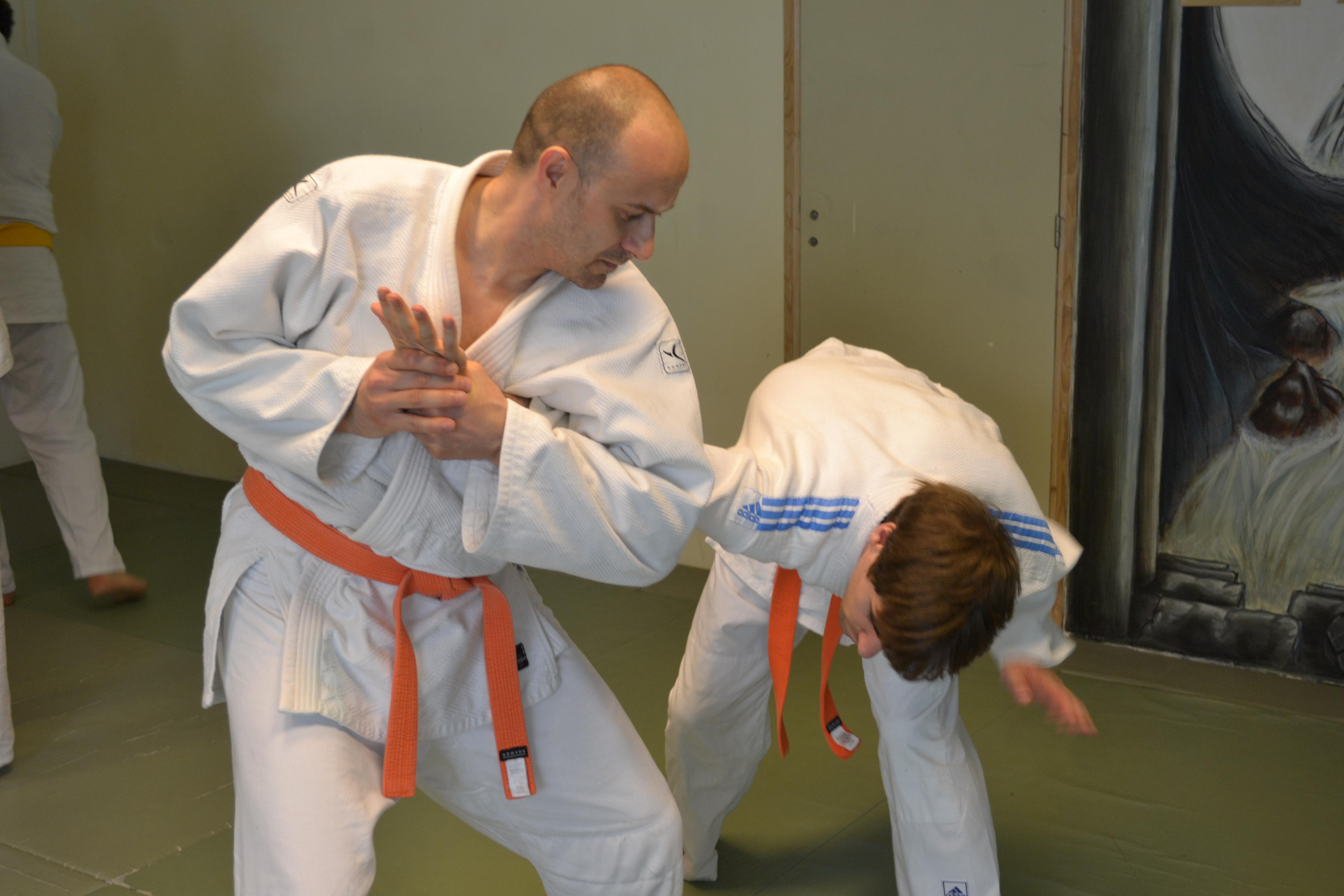 stage-jujitsu-efjjsd-30-juin-2012-photo-julien-christian-waki-gatame