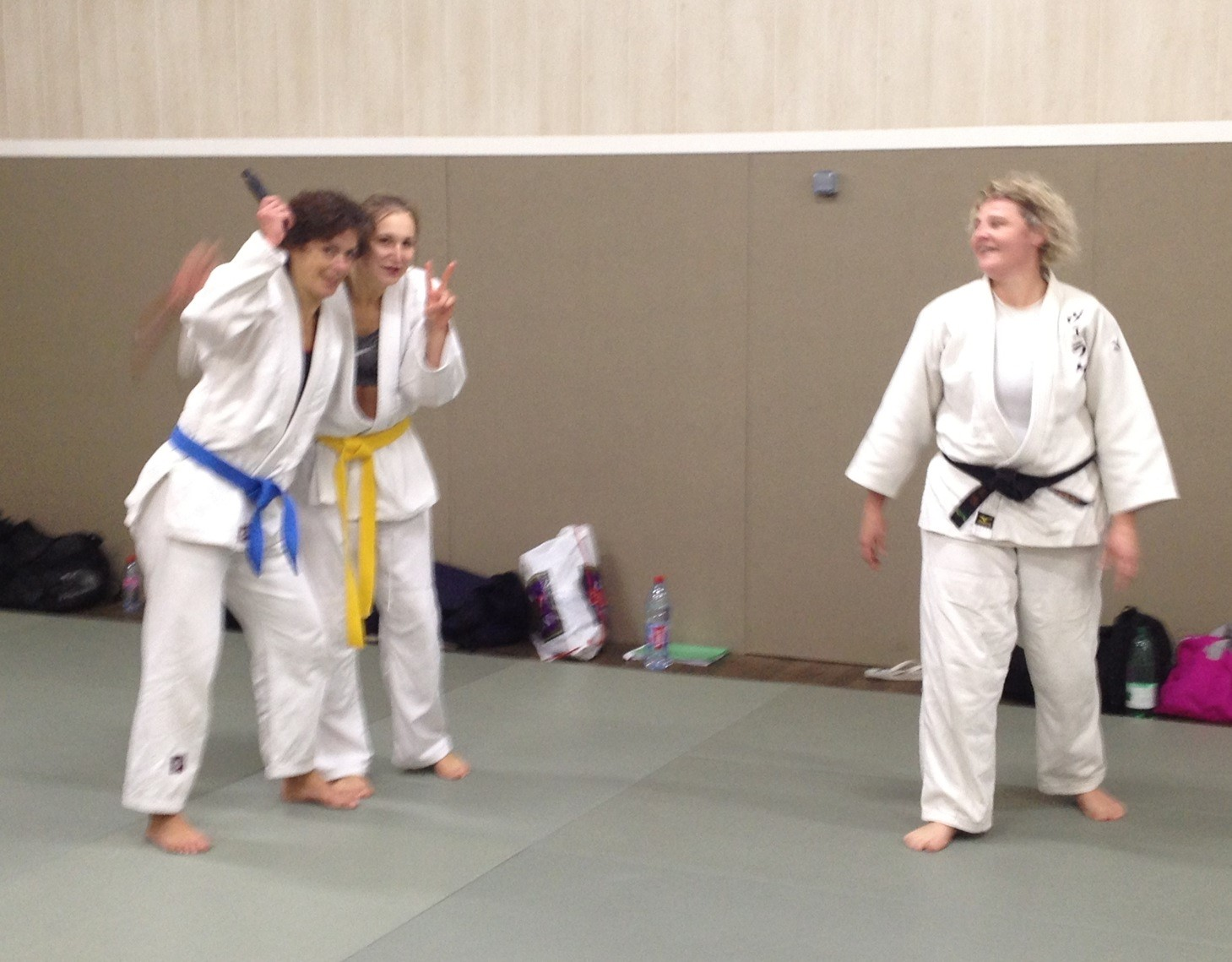 jujitsu-efjjsd-novembre-2013 1