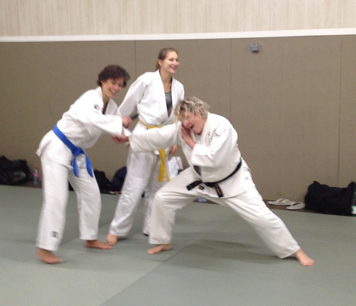 jujitsu-efjjsd-novembre-2013 12