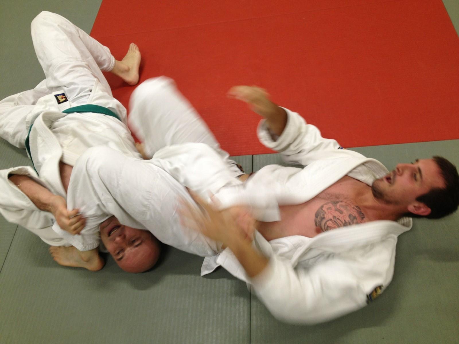 jujitsu-efjjsd-novembre-2013 2