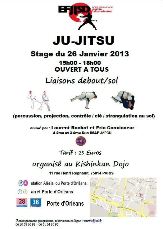 stage ju jitsu janvier 2013