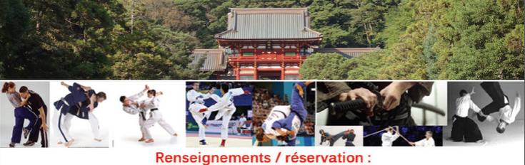 EFJJSD Ecole Francaise de JuJitsu et Self Defense Stage international IMAF FRANCE